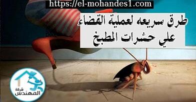 طرق سريعة لعمية القضاء علي حشرات المطبخ - شركة المهندس