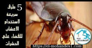 5 طرق سريعه الاستخدام الاعشاب للقضاء علي الحشرات - شركة المهندس